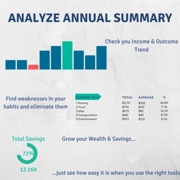 Analyze Annual Summary Grow Wealth Savings