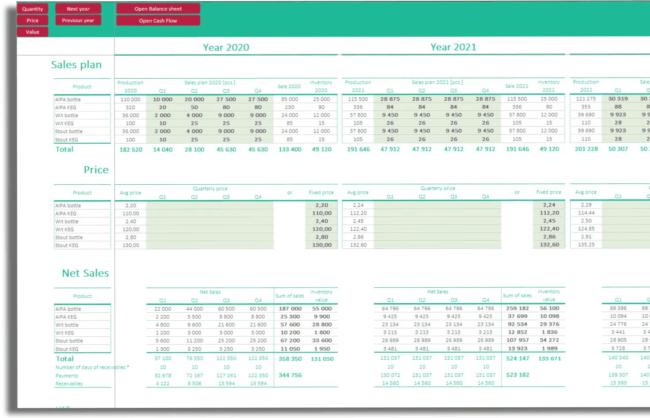 Budget Sales plan financial statement cash flow